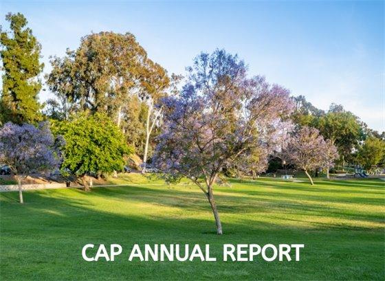 CAP Annual Report