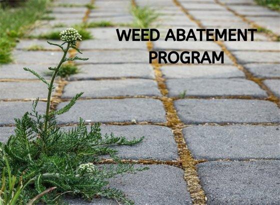 Weed Abatement Program