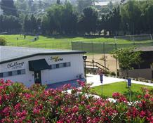 The Challenge Center