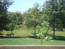 Northmont Park